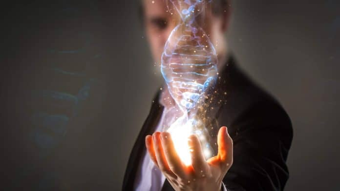 Human genome research. Genetic modification. Biotechnology of future